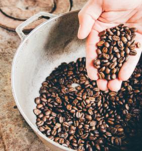 Rosters Coffee Arad - Magazin online, Cafea de specialitate, Prajitorie cafea
